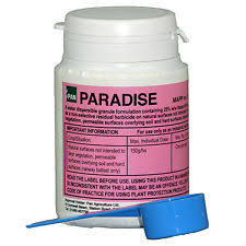Paradise 50g Residual Weedkiller