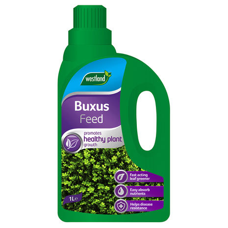 Buxus Feed Conc 1lt